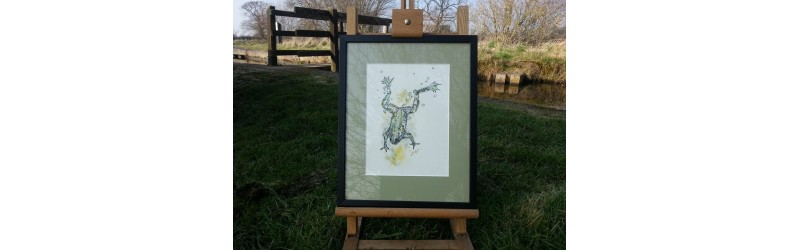 Original Drawing 'Frog' by Lesley Pearson