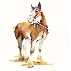 'Clydesdale'  by Penny Taylor-Beardow